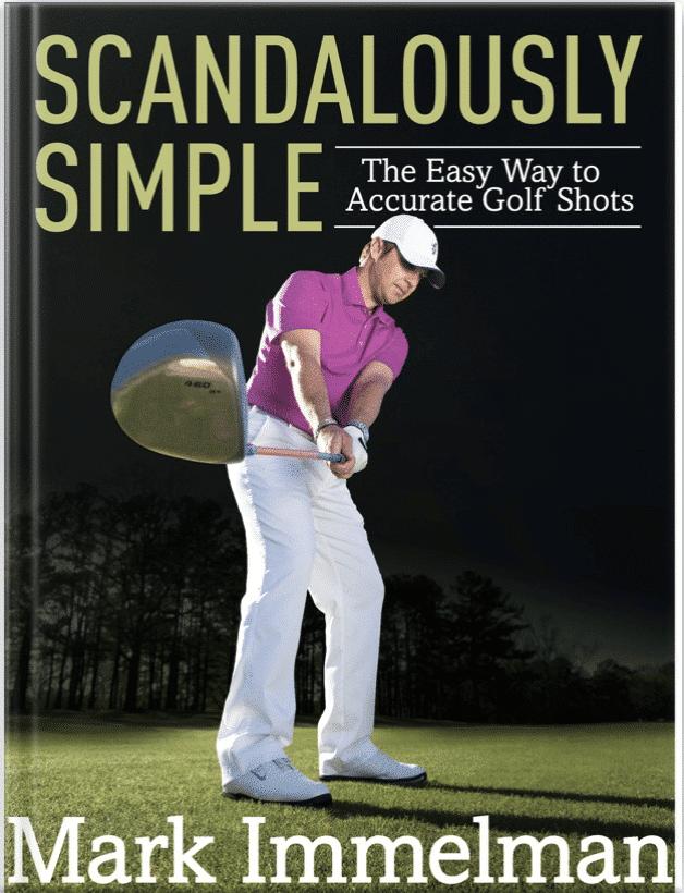 author Mark Immelman book scandalously simple